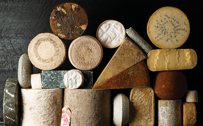 Photo of cheeses